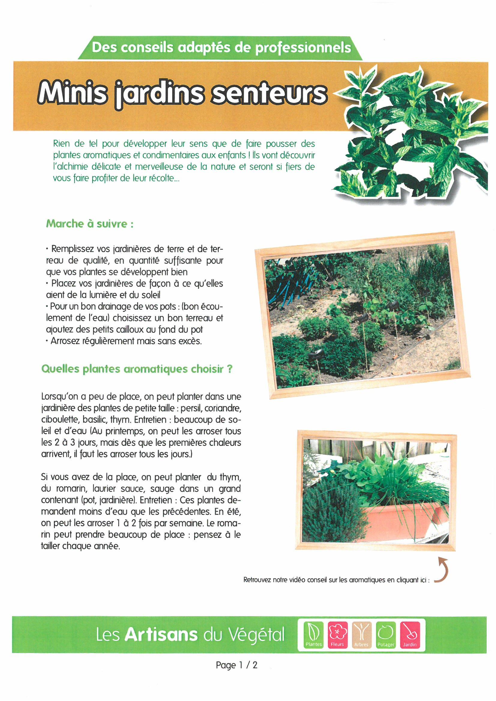 Fiches pratiques et conseils | Pépinières Jacquet