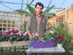 BIEN NOURRIR CES PLANTES